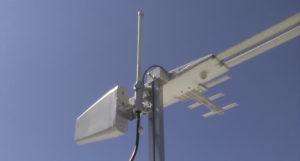 antenna crop